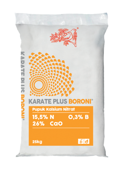 KARATE PLUS BORONI