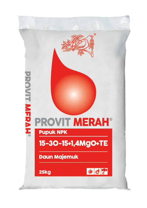 PROVIT MERAH