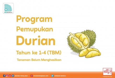 Program Pemupukan Durian Tahun ke 1-4 (Tanaman Belum Menghasilkan / TBM)