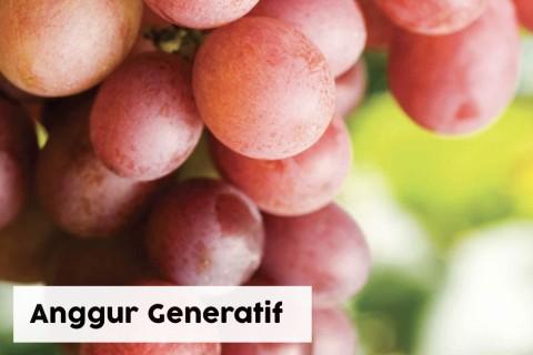 Anggur Generatif