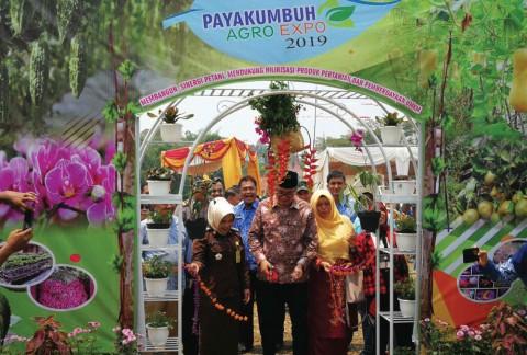 Agro Expo 2019: Payakumbuh