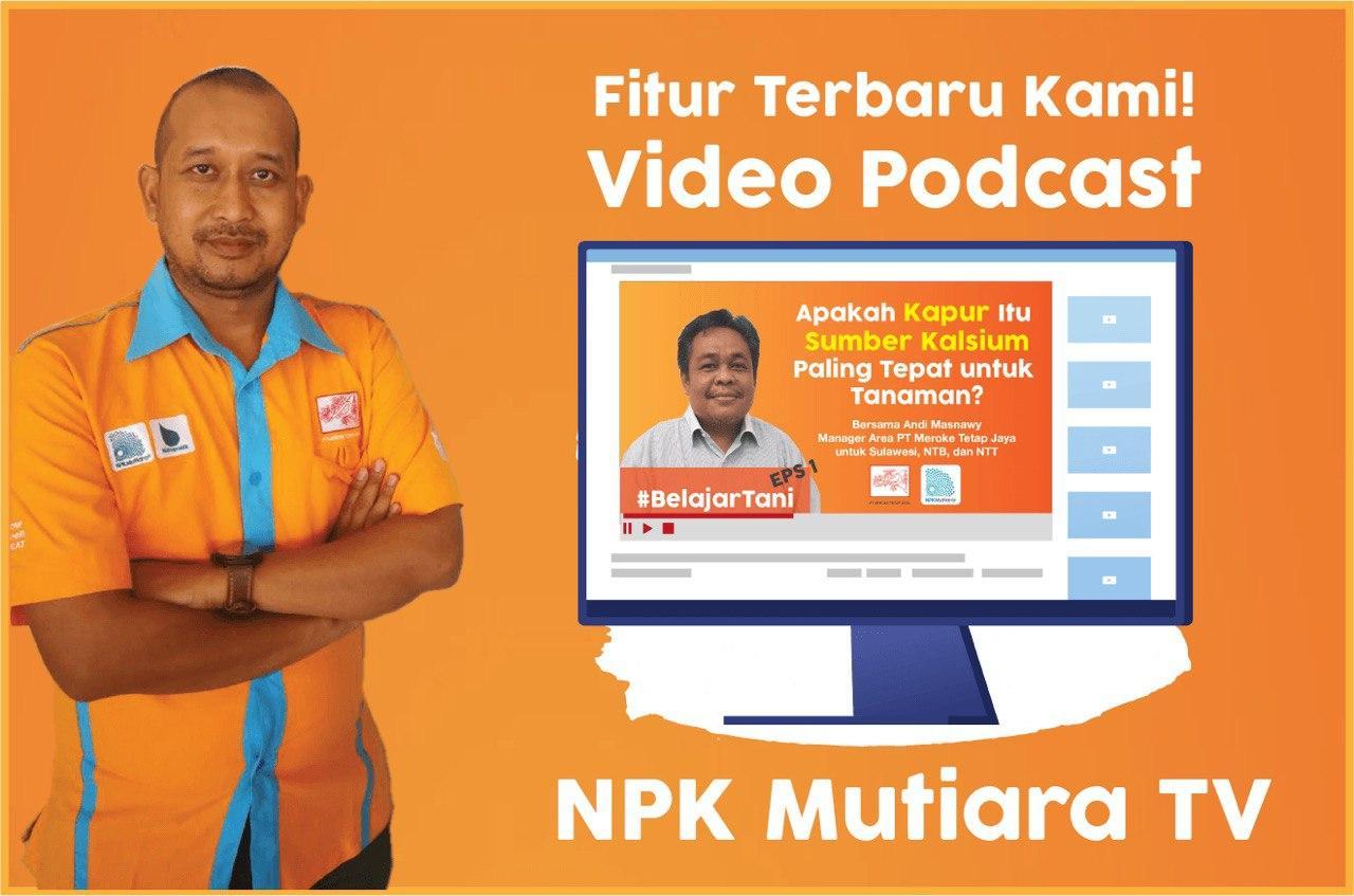 npkmutiara tv